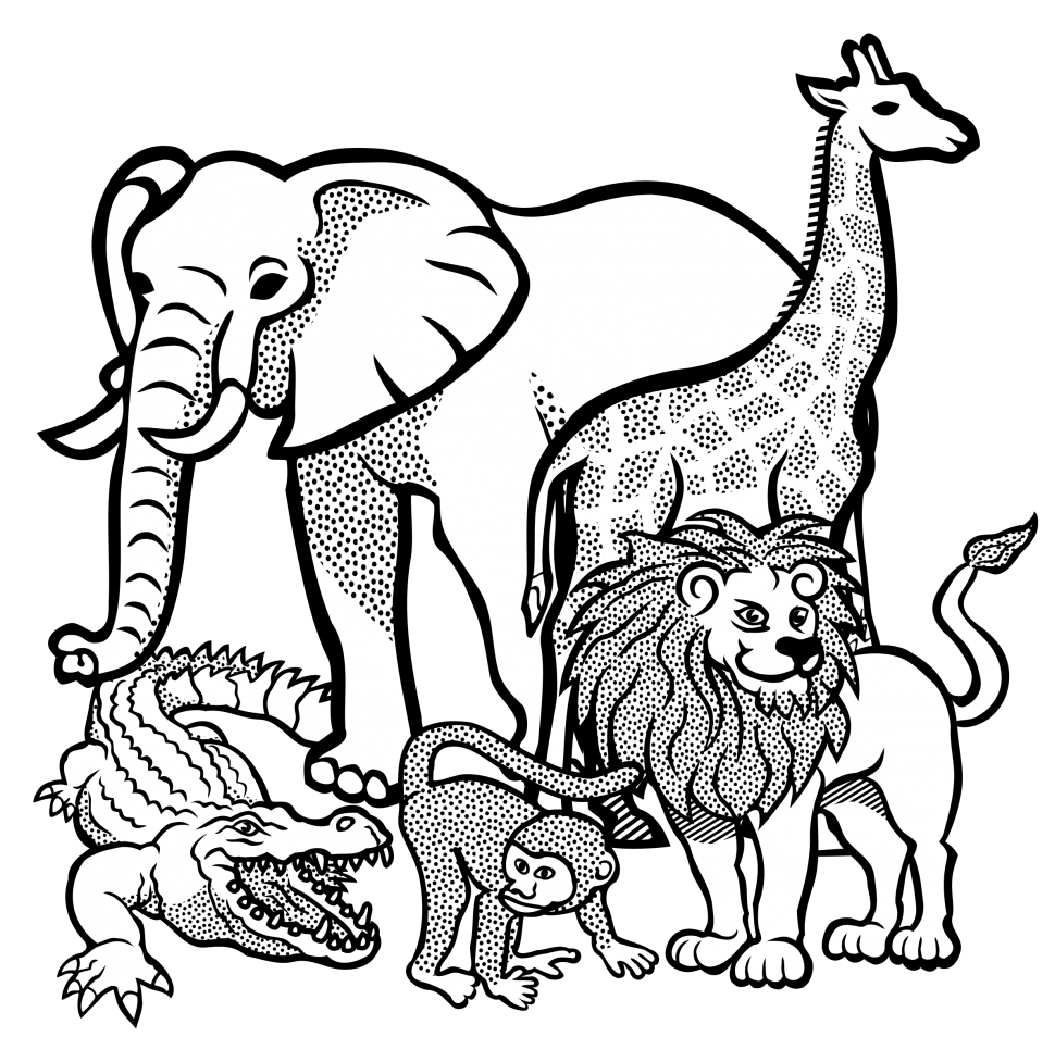 970x977 Coloring Free Printable Animal Outlinesfree Outlines Astonishing