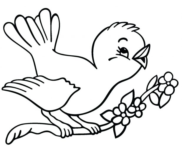 618x513 Coloring Pages awesome outlines of birds. Outlines Of Birds To