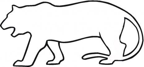 465x215 Tiger Outline Clipart