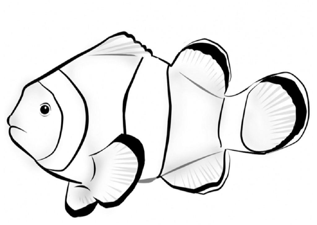 1024x728 Fish Color Page For Kindergarten Kiddo Shelter