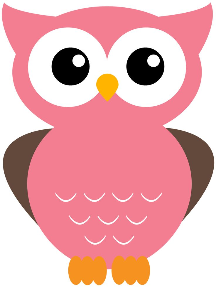 Owl Cartoon Cliparts