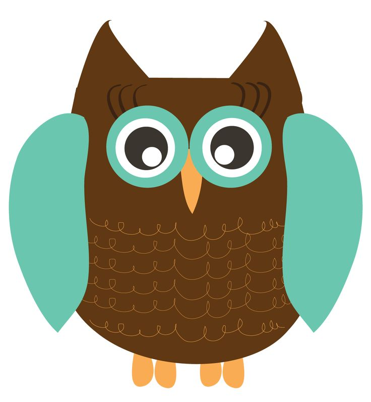 736x797 Real Owl Clipart