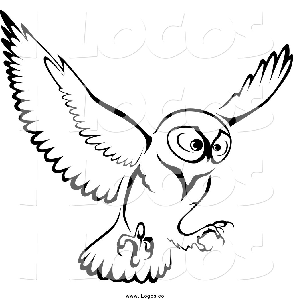 1024x1044 Barn Owl Clipart Black And White