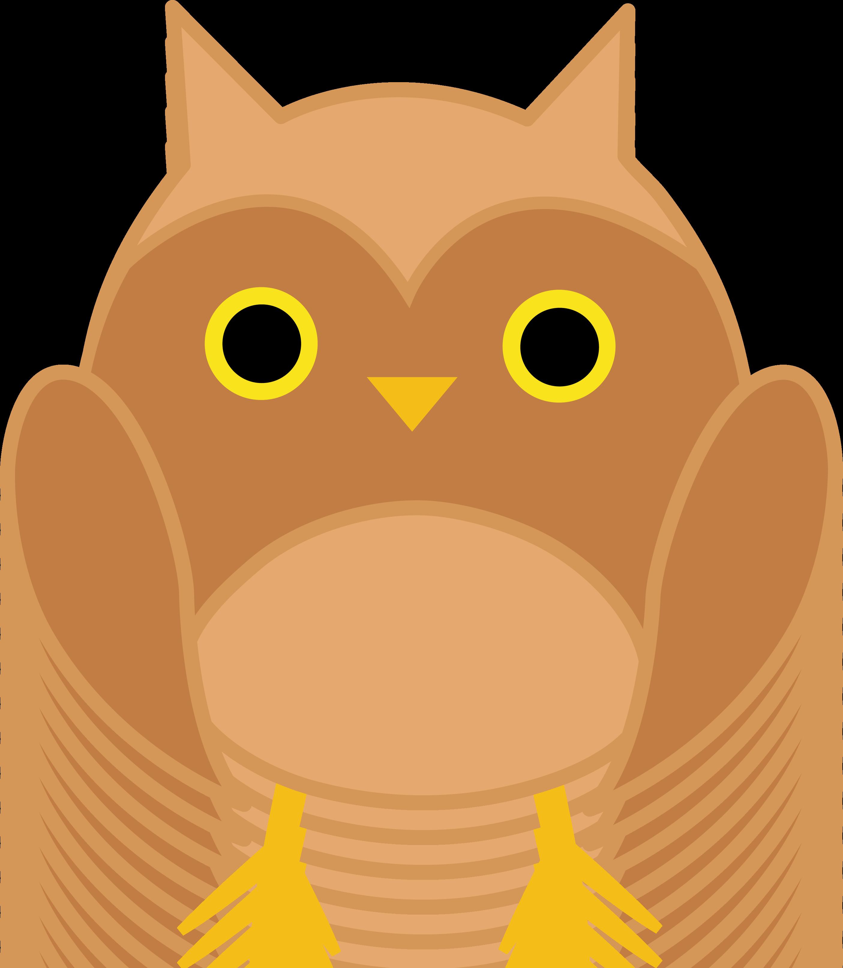 2810x3228 Cute Brown Owl