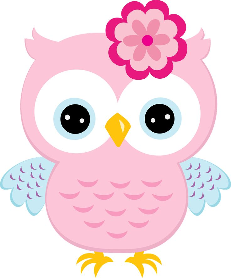 Owl Clipart For Teachers