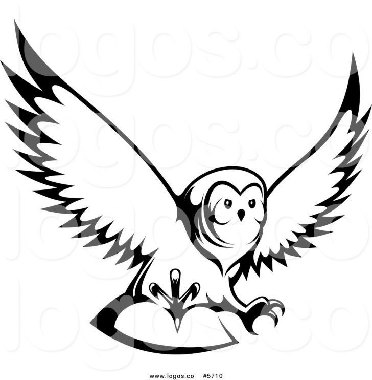 728x742 Outline Of An Owl Clip Art Library Cliparts To Colour Animal