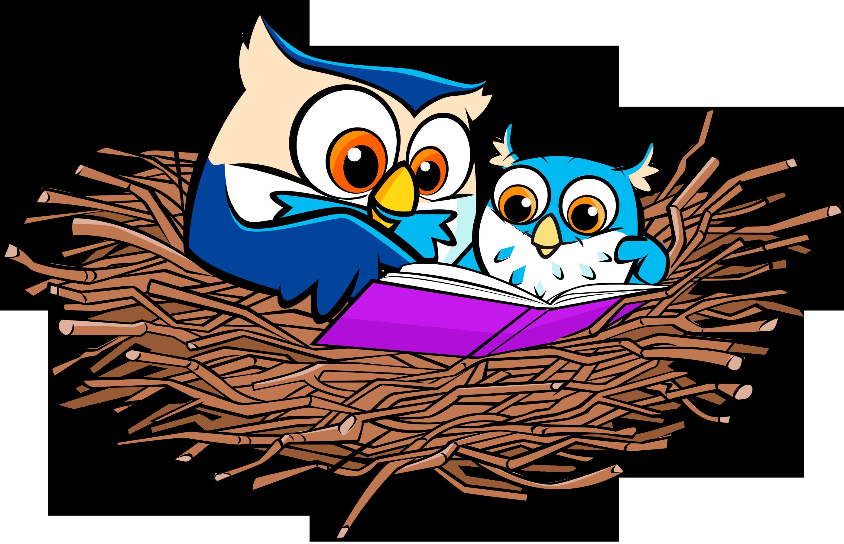 2792x1801 Nest Clipart Owl Nest