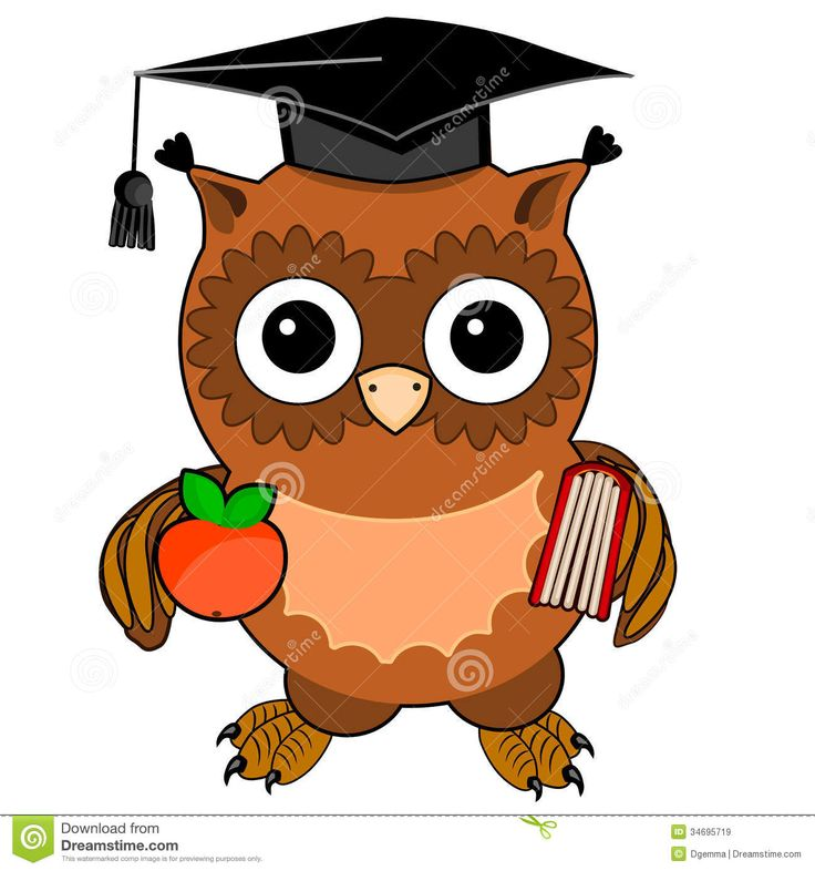 736x786 Book Clipart Cute Owl