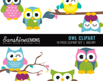 340x270 Items Similar To Cute Owl Clipart Clip Art