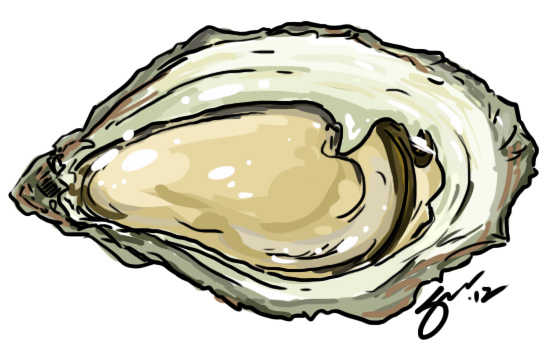 552x361 Drawings Of Food Oysters Alexander Shen