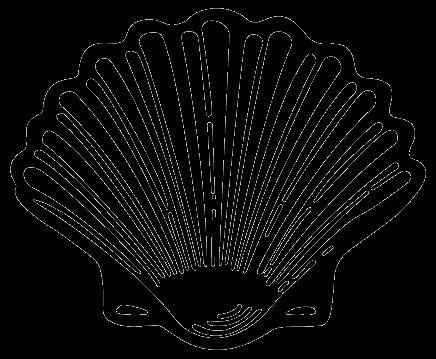 436x359 Oyster Shell Clip Art Shell Clipart Panda