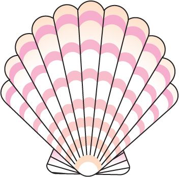 352x348 Seashell Clipart, Suggestions For Seashell Clipart, Download