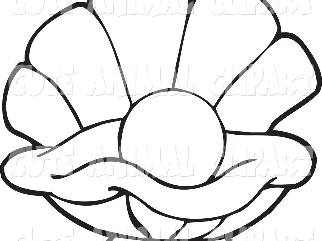 1024x768 Download Oyster Animal Coloring Pages