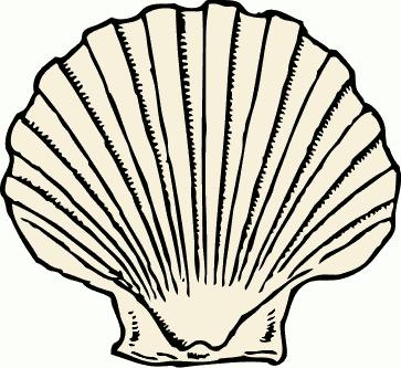 363x333 Free Seashell Clipart, 1 Page Of Public Domain Clip Art