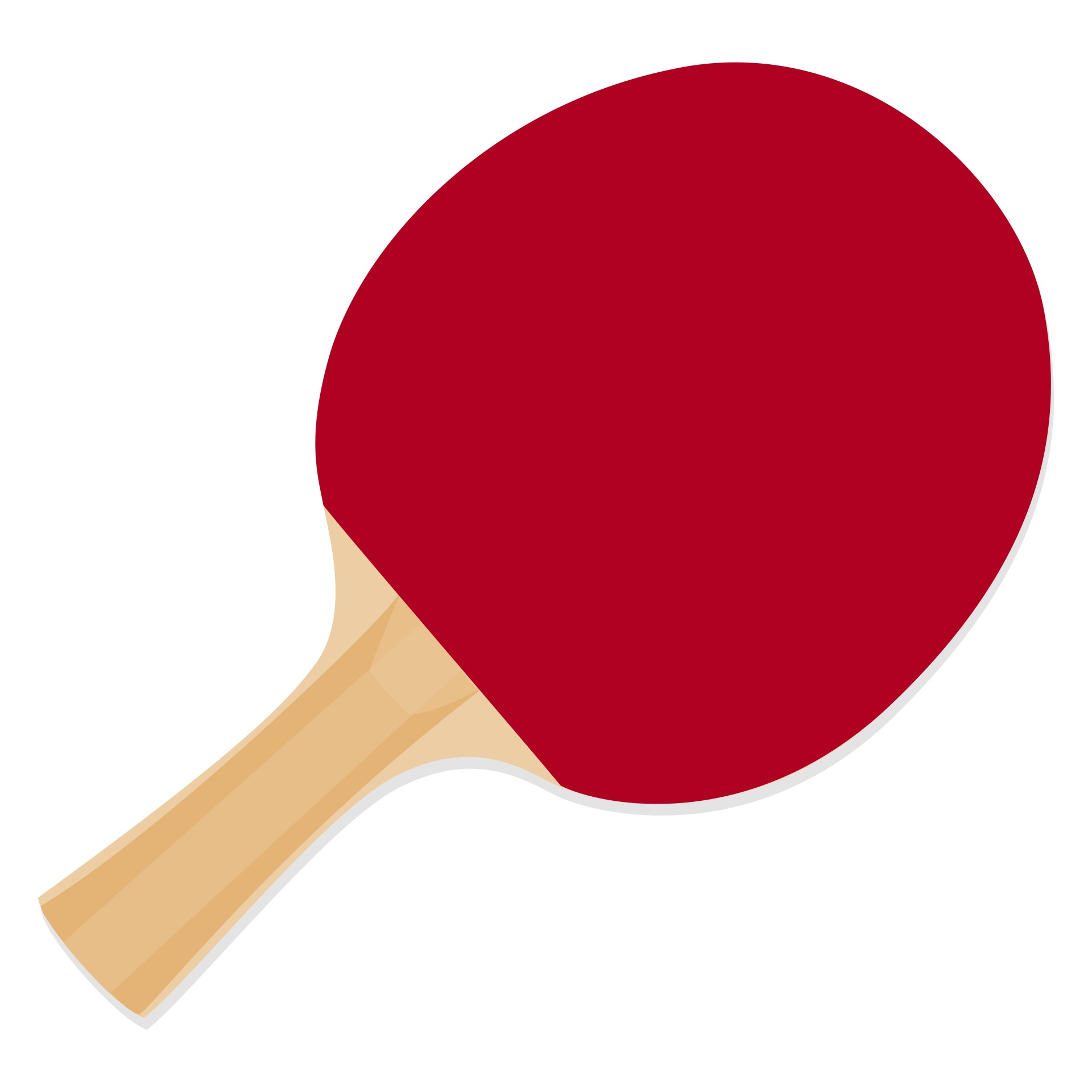 1920x1920 Dhs Ping Pong Paddle A5002, Table Tennis Racket