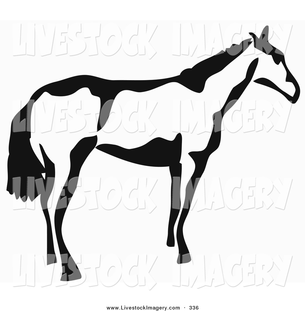 1024x1044 Clip Art Of A Black And White Paintbrush Stroke Styled Horse