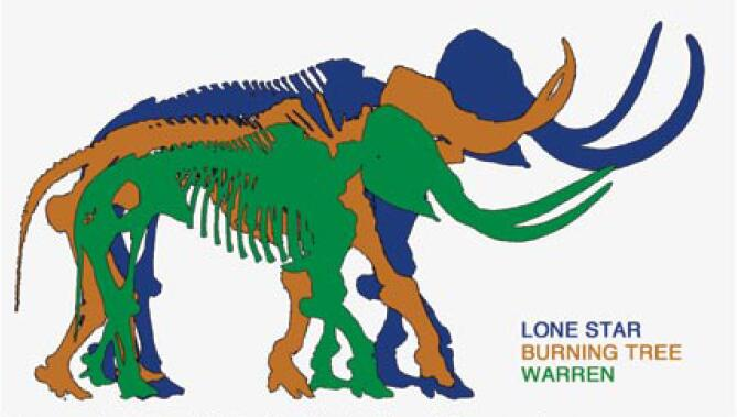 669x379 The Tragedy Of Lone Star A Central Coast Paleontologist