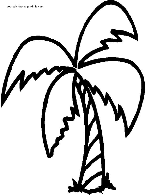 Palm Leaf Clipart