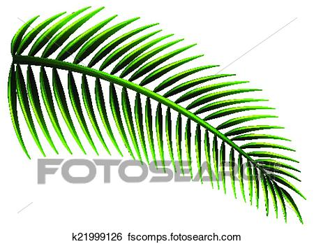 450x349 Clip Art of Palm leaves k21999126