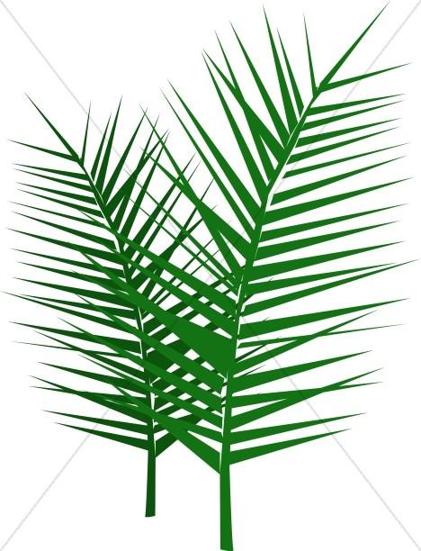 468x612 Palm Sunday Clipart Images Sharefaith 5