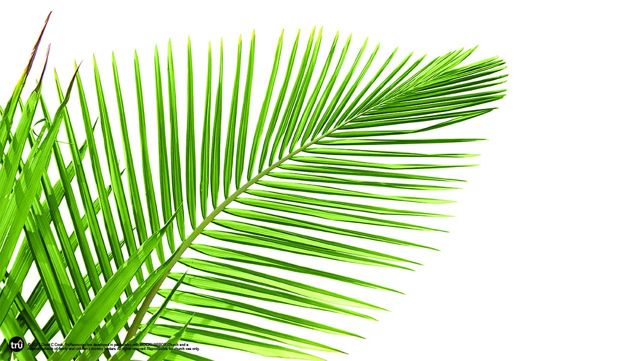 1280x721 Holy Week Palm Sunday