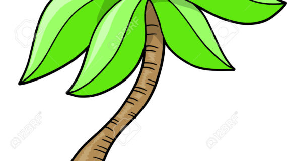 570x320 Palm Tree Cartoon Drawing Cartoon Coconut Tree Stock Vector