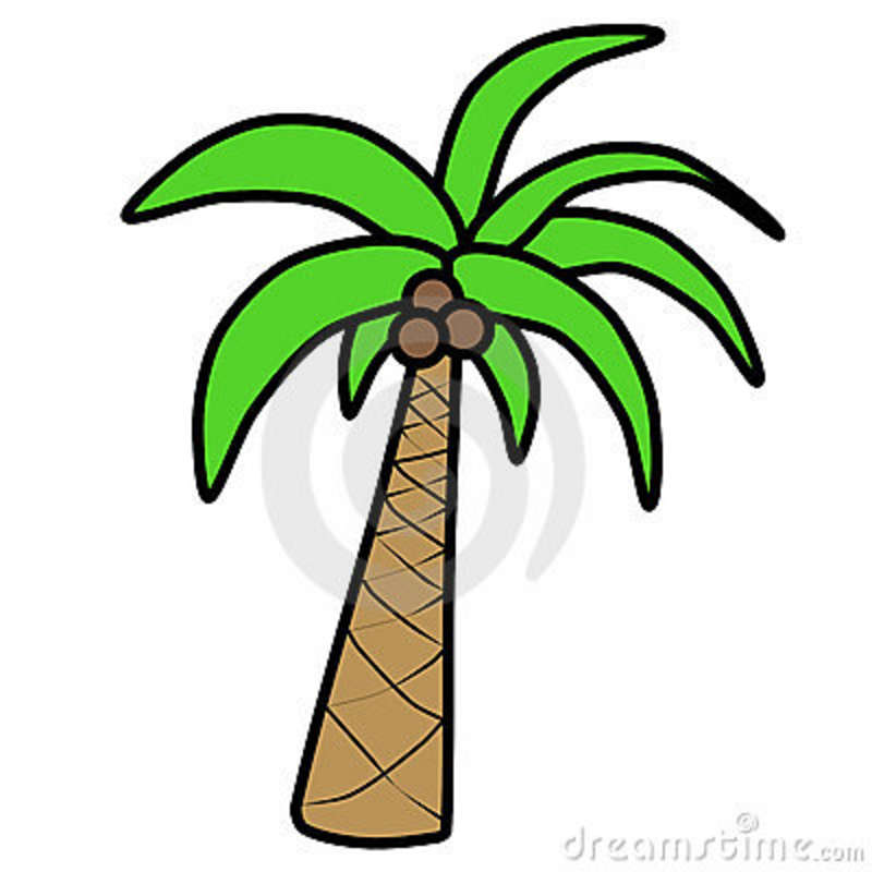 Palm Tree Cartoon Image | Free download best Palm Tree ...