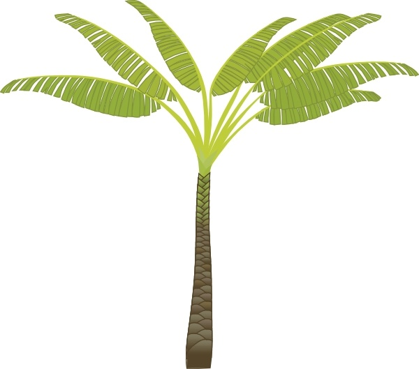 600x529 Palm Tree Clip Art Free Vector In Open Office Drawing Svg ( Svg