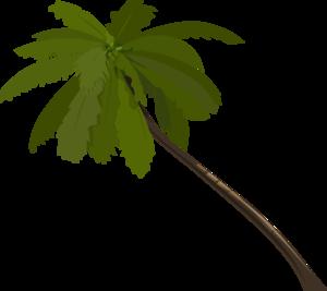 300x267 Palm Tree Art Tropical Palm Trees Clip Clip Art