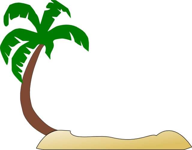 640x500 Christmas Tree Clipart Palm Tree