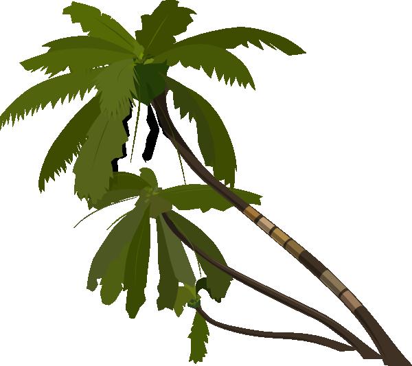 600x533 Vector Palm Trees Clip Art