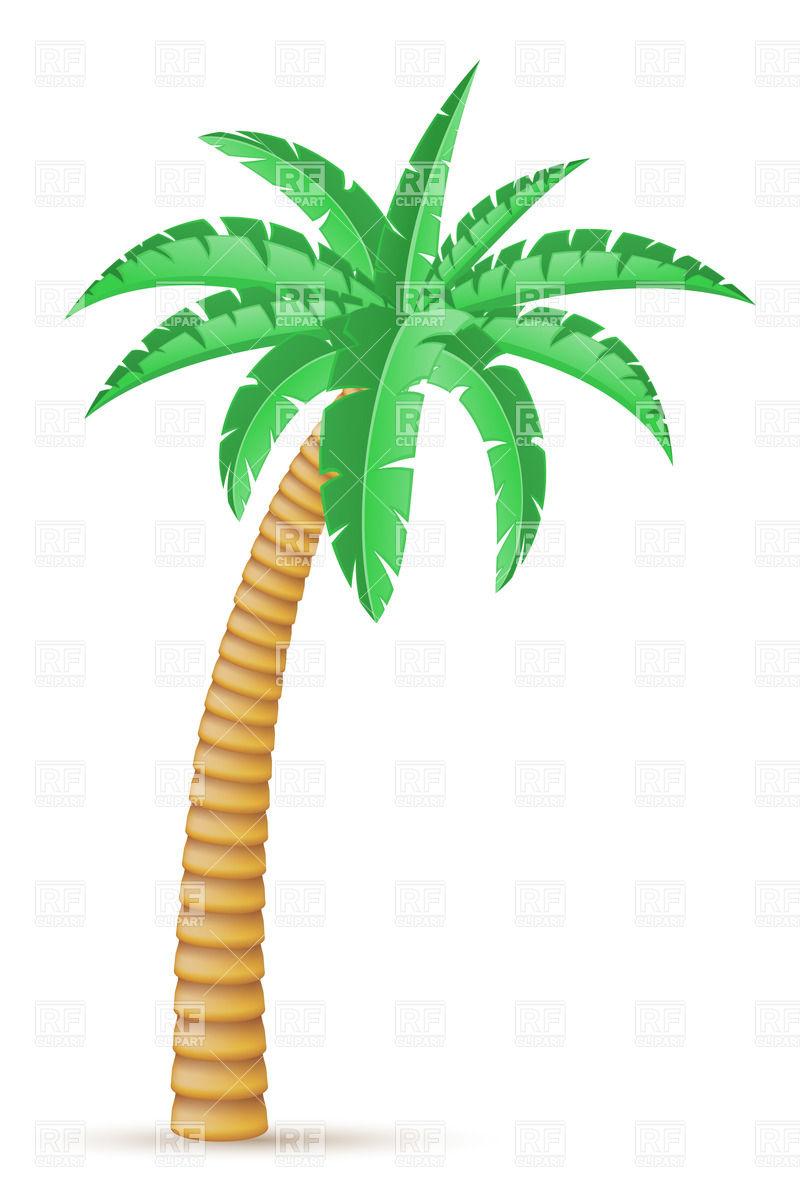 800x1200 Surfboard Palm Tree Clipart