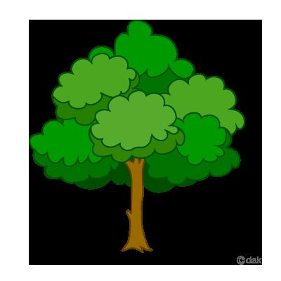 400x400 Oak Tree Clipart Tree Clip Art Id 76642 Clipart Pictures