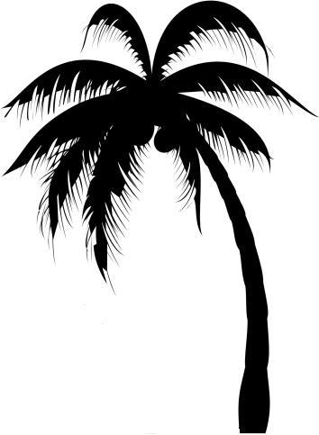 354x483 Palm Tree. Tree Tattoo 5 Clipart Panda