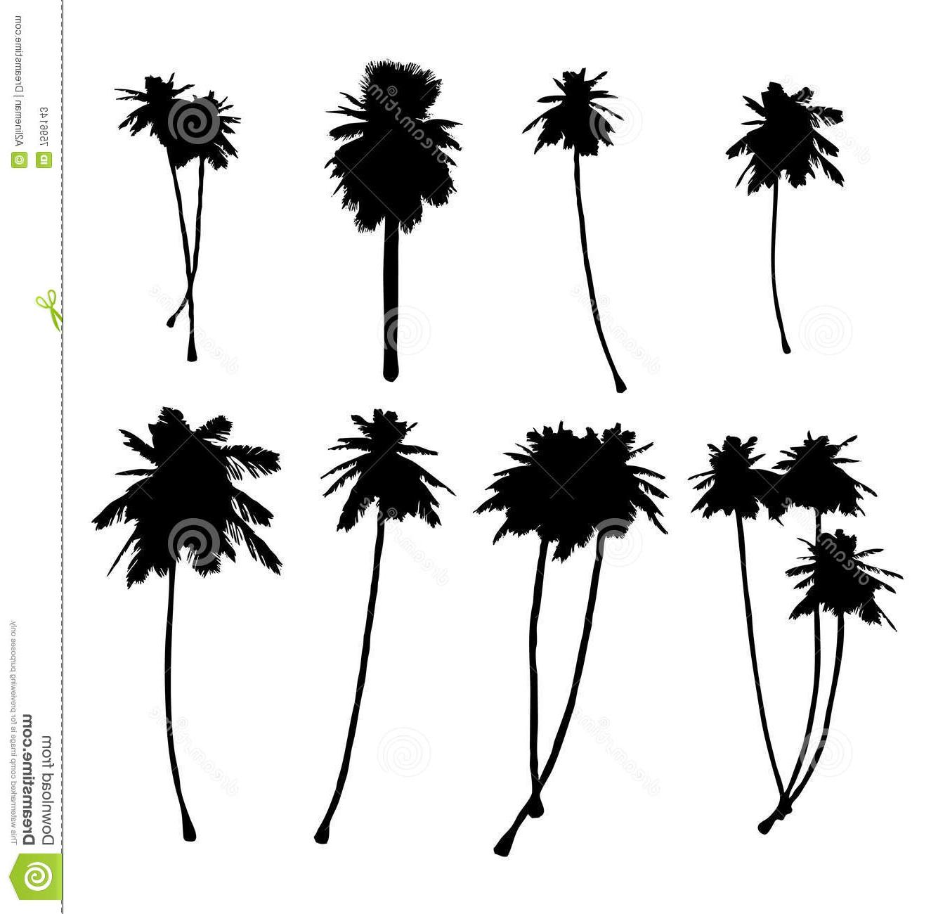 1325x1300 Top 10 California Palm Tree Clipart Image