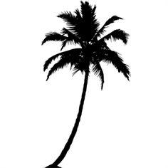 236x236 Palm%20tree%20silhouette Pta Palm