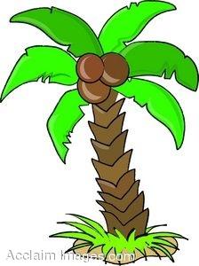 224x300 Clip Art Of A Cartoon Coconut Palm Tree