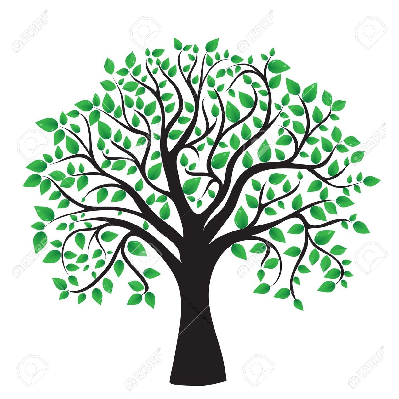 1300x1300 Tree Clipart Transparent Background