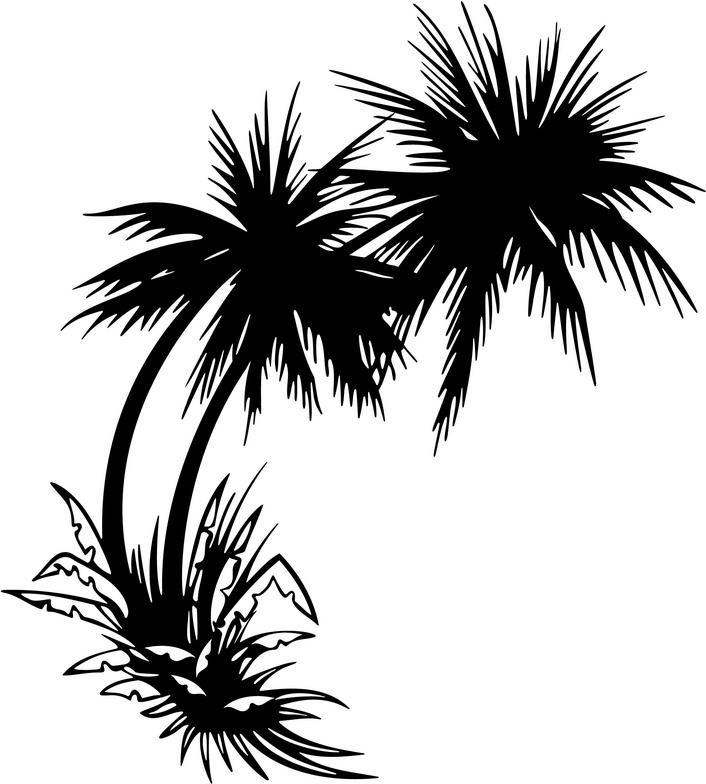 706x784 Image Of Palm Tree Clipart Free Clip Art Clipartoons