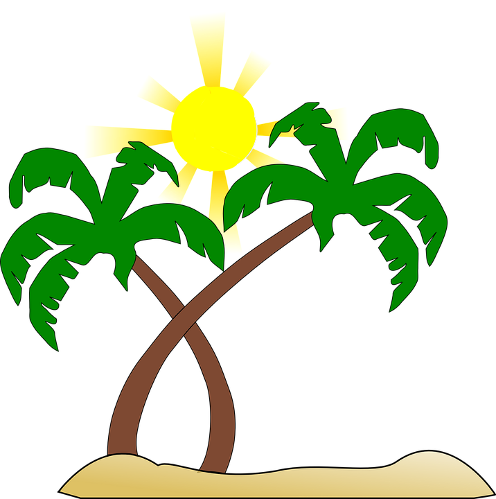 716x720 Palm Tree Clipart Brown