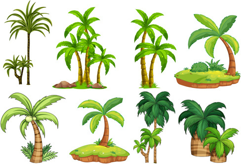 488x332 Palm Tree Free Vector Download (4,940 Free Vector) For Commercial