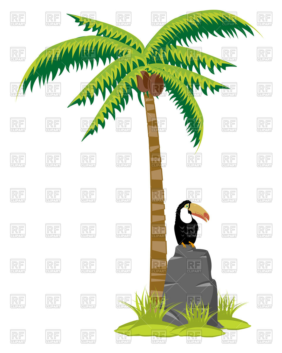 960x1200 Palm Tree With Coconuts And Toucan On Stone