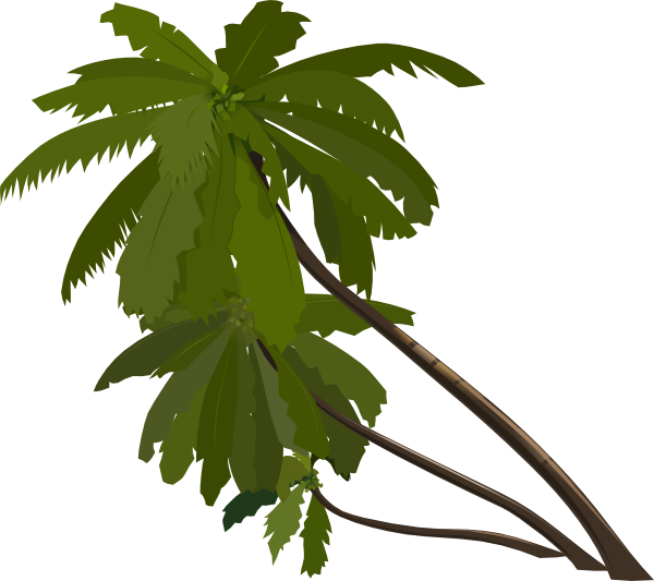 600x533 Three Palm Trees Clip Art Free Vector 4vector