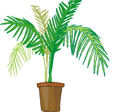 399x384 Palm Tree Clip Art 7