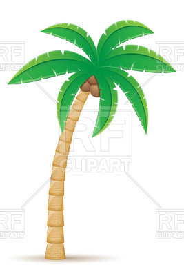 267x400 Tropical Coconut Palm Tree Isolated On White Background Royalty