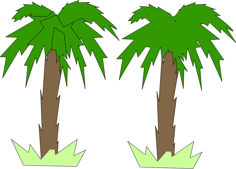800x574 Image For Palm Tree Nature Clip Art Nature Clip Art Free