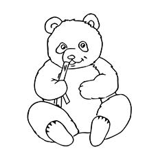 Panda Bear Outline Free download