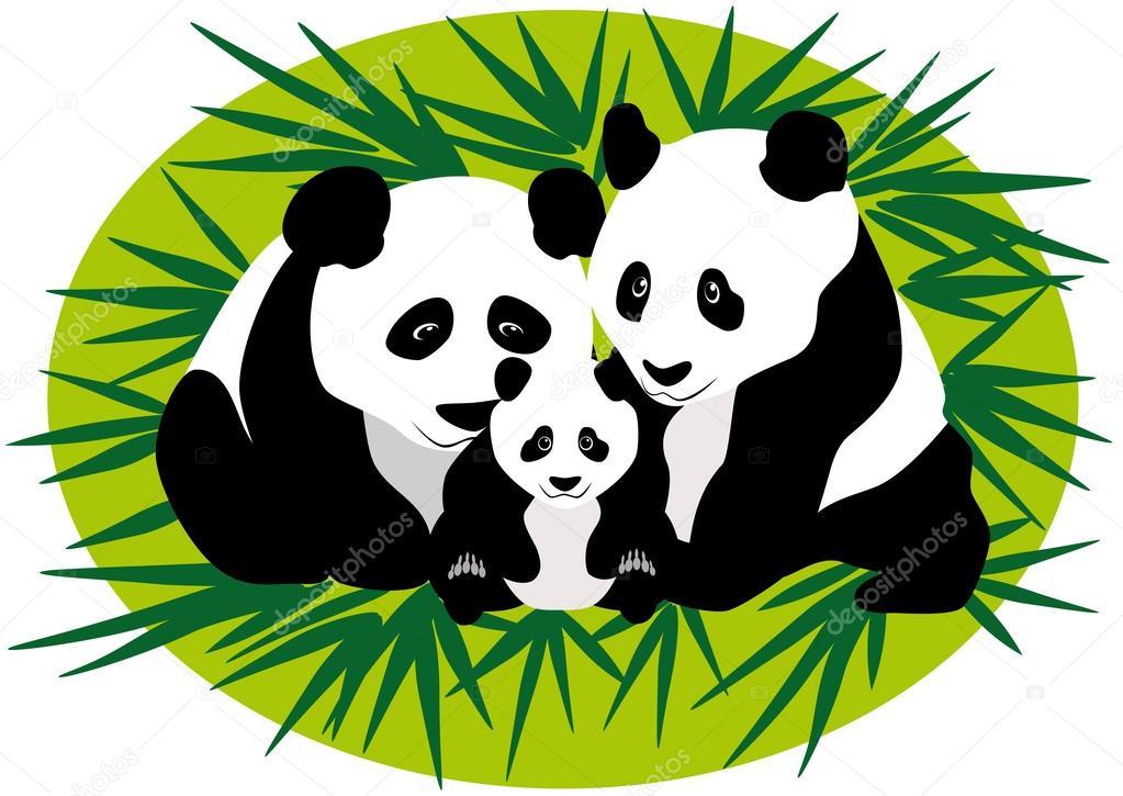 1023x725 Family Panda Bears Stock Vector Valentinash