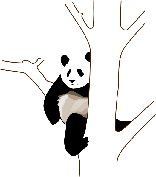522x594 Panda On A Tree Clip Art Free Vector 4vector