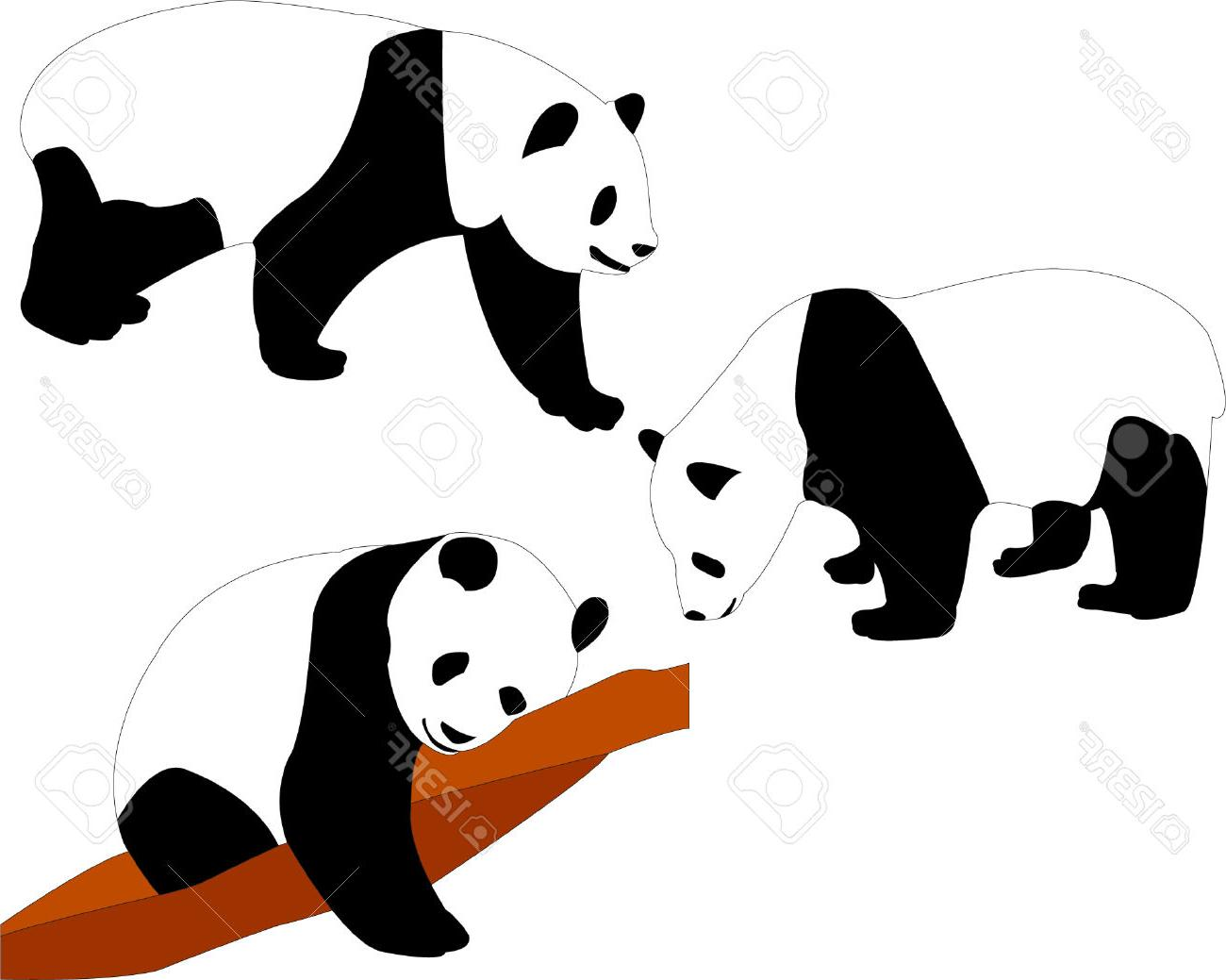 1300x1039 Best HD Panda Bears Vector Stock Bear Silhouette Pictures